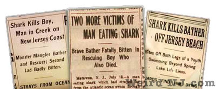 The Matawan Man Eater Real New Jersey Jaws Of 1916