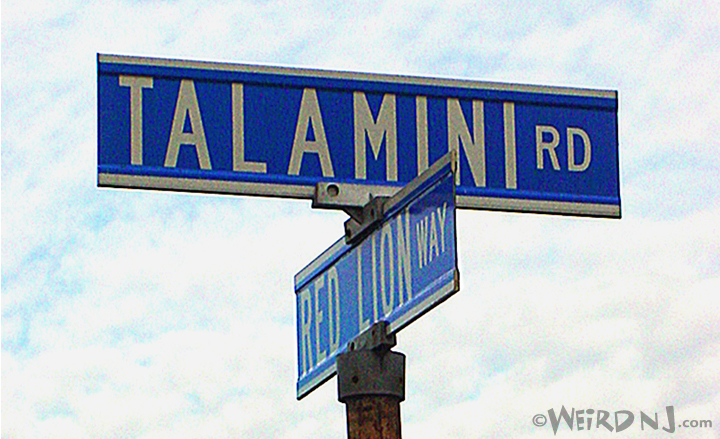 Talamini Road Header