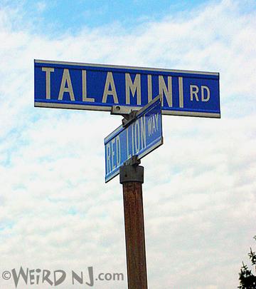 Talamini Road Sign