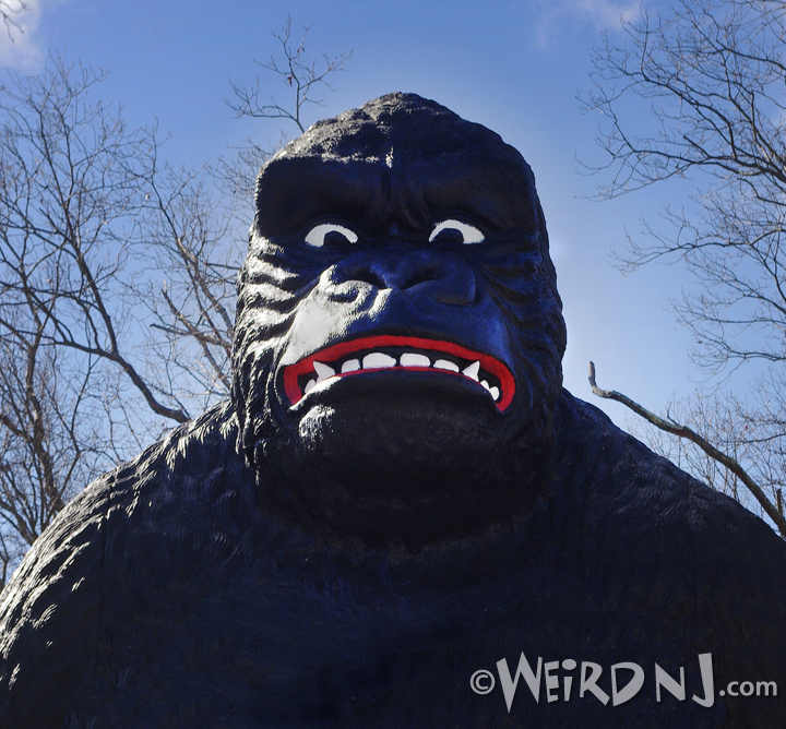 Mighty Joe Bust