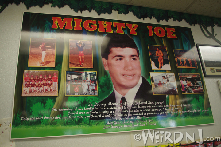 Mighty Joe Tribute