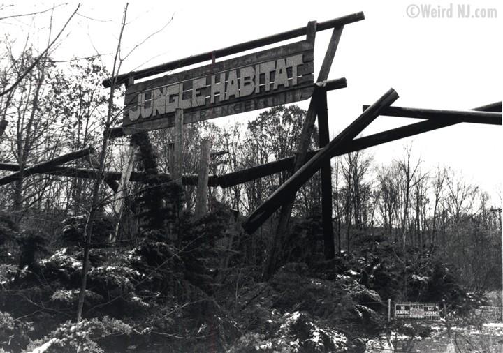 Jungle Habitat: Wild, Free and Abandoned | Weird NJ